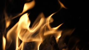 Bonefire, Fire flames in campfire, campsite at Masai Mara Park, Kenya,. Slow motion stock video