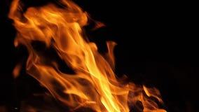 Bonefire, Fire flames in campfire, campsite at Masai Mara Park, Kenya,. Slow motion stock footage