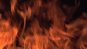 Bonefire, fuego flamea en la hoguera, sitio para acampar en Botswana, metrajes