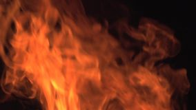 Bonefire, fuoco fiammeggia nel fuoco di accampamento, campeggio nel Botswana, stock footage