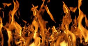 Bonefire, llamas del fuego en la hoguera, sitio para acampar en el Masai Mara Park, Kenia, cámara lenta almacen de video