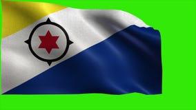 Boneiru, Flag of Bonaire - LOOP stock video footage