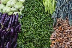 Bonen, aubergines en koolstapels op de lijst van de landbouwbedrijfmarkt De foto van de groentenclose-up Organische landbouwbedri royalty-vrije stock afbeelding