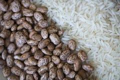 Bonen en rijst Royalty-vrije Stock Foto's