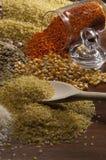 Bonen, kuiken, voedsel Royalty-vrije Stock Fotografie