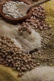 Bonen, kuiken, voedsel Royalty-vrije Stock Afbeelding