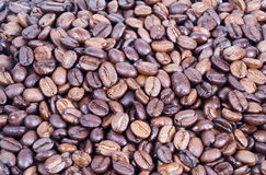 Bonen van de koffie 2 Stock Afbeeldingen