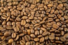Bonen van de koffie 6 Stock Foto's