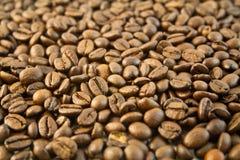 Bonen van de koffie 7 Stock Afbeeldingen