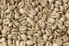 Bonen van de Malabar de groene niet geroosterde koffie Stock Afbeelding