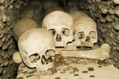 Bones and Coins. A detailed view of one of the crypts at the ossuary in Kutna Hora with skulls. Coin offerings have been tossed into the area with some landing Royalty Free Stock Photo