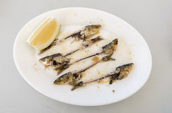Bones of five eaten Sardines, on a white plate. With the head and tails intact, and a wedge of Lemon on the side Royalty Free Stock Image