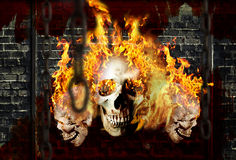 Free Bones In Fire 03 Stock Photography - 13768312