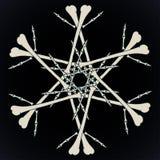 Bones jolly snowlake Stock Image