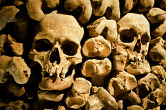 Bones. A lot of human bones stock image