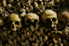 Bones, skeletons and skulls. Stack on top of each other stock images