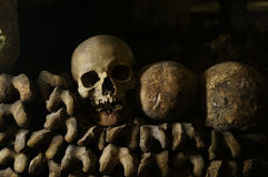 Bones, skeletons and skulls. Stack on top of each other royalty free stock photos