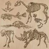Bones, Skulls, Skeletons - freehands, vector Royalty Free Stock Images
