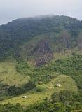 Bonete on Ilhabela Island, Brazil Royalty Free Stock Photo