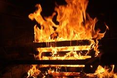 bonfire fotos de stock