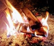 bonfire foto de stock royalty free