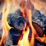 bonfire imagem de stock