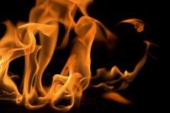 Bonfire. Isolated on black background Stock Photos