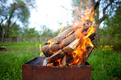 Bonfire. The beautiful fire burns in a brazier royalty free stock images