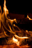 Bonfire. Night bonfire. Burning wood. Close-up Royalty Free Stock Photos