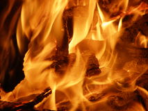 The bonfire Stock Photography