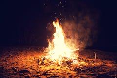 Free Bonfire Royalty Free Stock Photo - 49204185