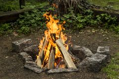 bonfire Fotografia de Stock Royalty Free