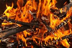 bonfire Imagens de Stock