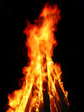 Bonfire Royalty Free Stock Image