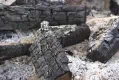 Bonfire ashes Royalty Free Stock Image