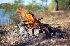Bonfire in the autumn forest. Coals of fire Stock Photo