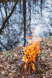 Bonfire on the bank of a forest river in the evening stock photo