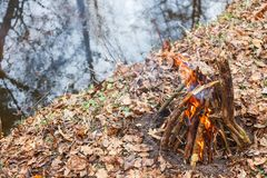 Bonfire on the bank of a forest river in the evening stock photography