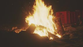 Bonfire on the beach stock video footage