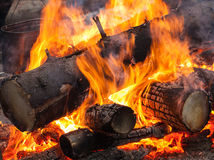 Bonfire with black kettle on it Stock Image