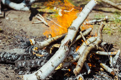 The fire on the nature royalty free stock photos