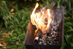 Bonfire in brazier Stock Photography