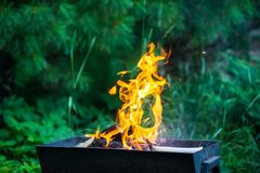 Bonfire in brazier Royalty Free Stock Image