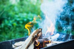 Bonfire in brazier Royalty Free Stock Images