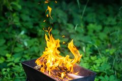 Bonfire in brazier Royalty Free Stock Photos