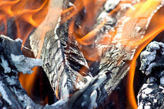 Bonfire. The Bright flame , the bonfire Royalty Free Stock Images