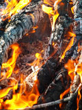 Bonfire. Royalty Free Stock Photos