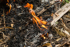 Bonfire from burning leaves Royalty Free Stock Images