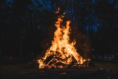 Bonfire burning trees at night. Large orange flame  on a black background. Fire on black. Brightly, heat, light, camping, stock photo