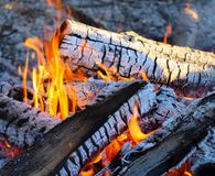 Fire at camp in front of lake. Bonfire at camp in front of lake Michigan Stock Image